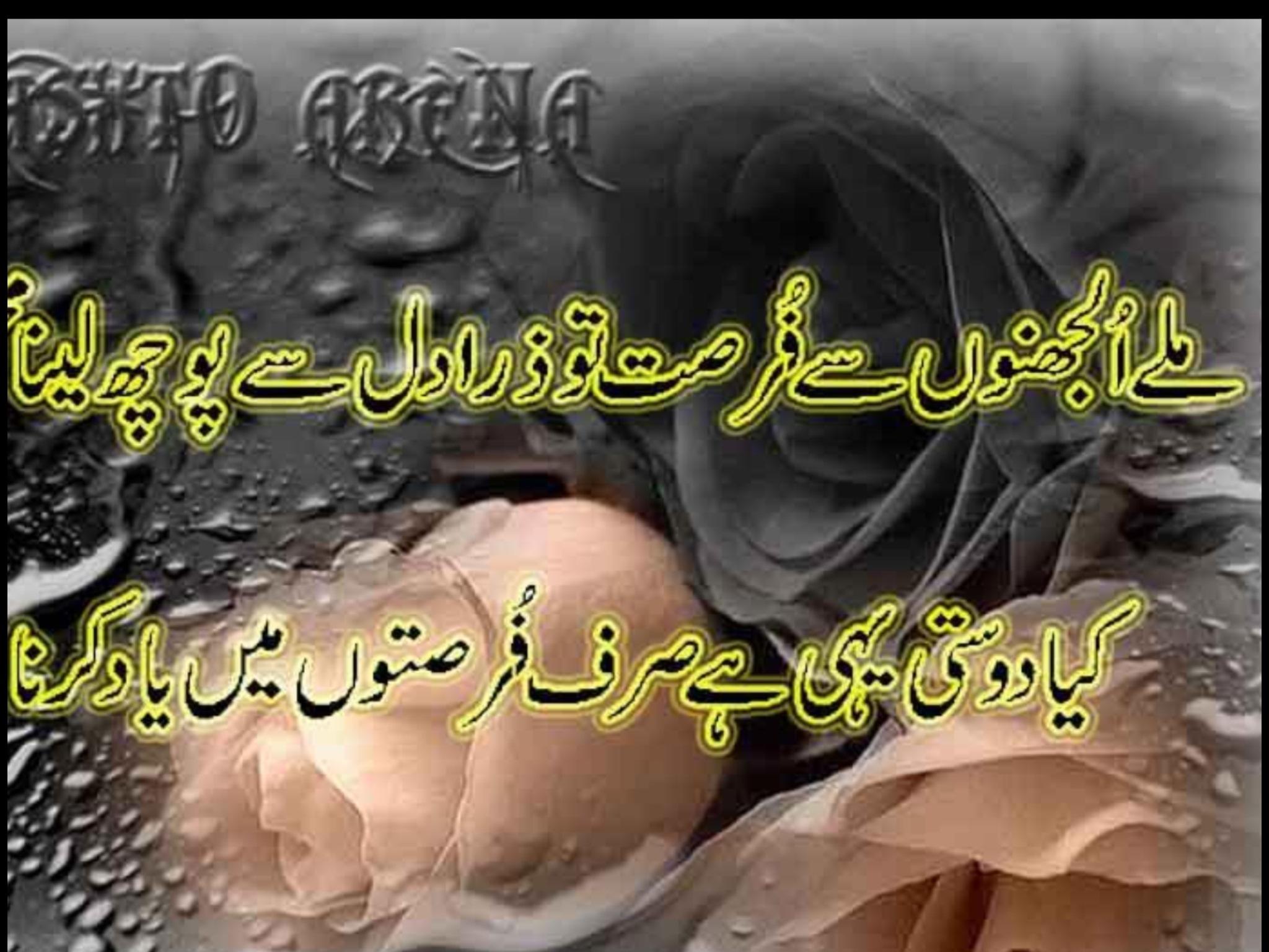 Urdu Poetry Have Fun Enjoy
